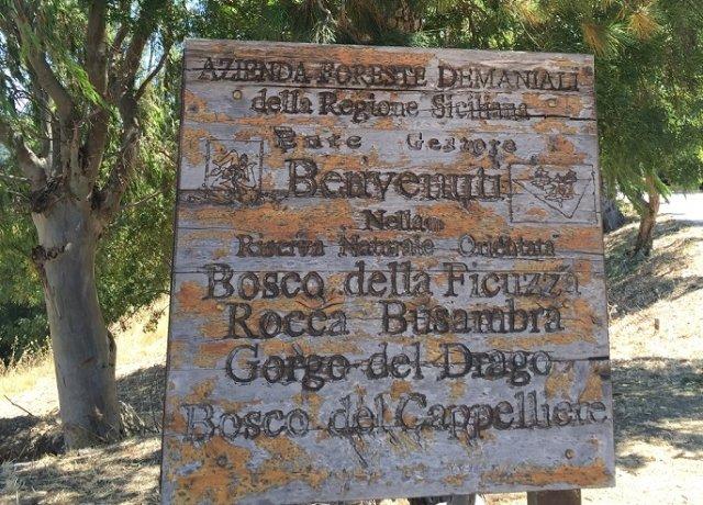 6feb2c983c Bosco Ficuzza: idee per un weekend con i bambini in Sicilia | Blog ...